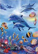 Царството на делфините -