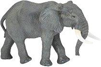 Африкански слон -