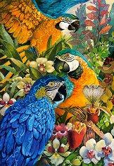 Амазонка - пъзел