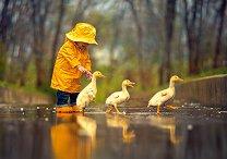 Приятели в дъждовен ден - пъзел