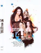 Payner DVD Collection - 14 - компилация