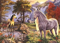 Диви коне - Стив Рийд (Steve Read) -