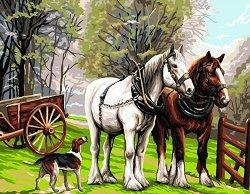 Рисуване по номера - Коне - Комплект за картина с размери 50 x 40 cm