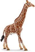 """Мъжки мрежест жираф - Фигура от серията """"Животни от дивия свят"""" - фигура"""