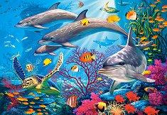 Тайните на рифа -