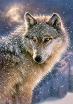 Вълк единак - пъзел
