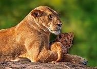 Аз и мама -