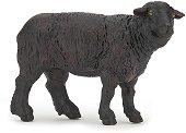 """Черна овца - Фигура от серията """"Животните във фермата"""" - фигура"""