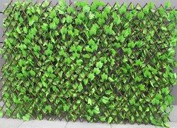 Градинска ограда с бръшлян