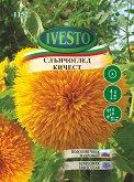 Семена от кичест Слънчоглед