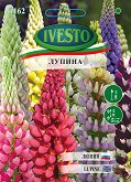 Семена от Лупина - микс от цветове