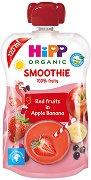 HIPP HiPPiS - Био смути напитка с ябълка, банан и червени плодове - Опаковка от 120 ml за бебета над 12 месеца - продукт