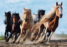 Галопиращи коне - пъзел
