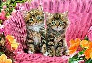 Котки върху градински стол - пъзел