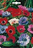 Луковици от Анемоне - Микс от цветове - Опаковка от 7 броя