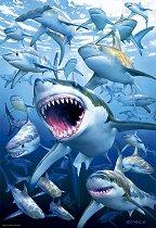 Акули - Ройс МакКлюр (Royce McClure) -