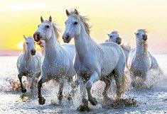 Бели коне по залез - пъзел
