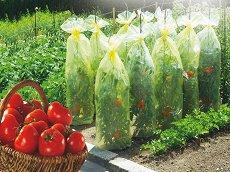Покривало за домати - Tomato Tube