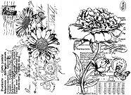 Силиконови печати - Гербер и божур  - Размер 14 х 18 cm -