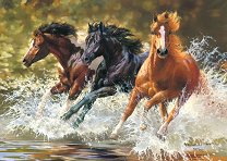 Коне в реката -