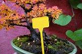 Табелки за надписване на растения - Label 15 - Комплект от 10 броя
