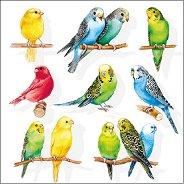 Салфетки за декупаж - Папагалчета