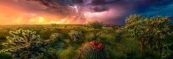 "Буря на хоризонта - панорама - Колекция ""Александър Фон Хумболт"" (Alexander von Humboldt) - пъзел"
