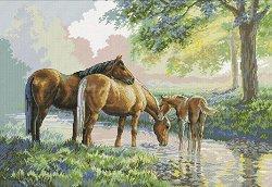 Щампован гоблен - Водопой - Комплект за картина с размери 75 x 54 cm