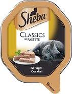 Sheba Tray Poultry Classics in Pastete - Пастет с птиче месо за котки на възраст над 1 година - разфасовка от 85 g - продукт