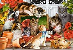 Котешка игра - пъзел