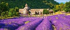 Нотр Дам Сенека, Франция - пъзел