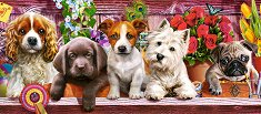 Кученца - пъзел