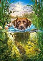 Плуващо куче - пъзел