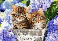 Сладки котенца - пъзел