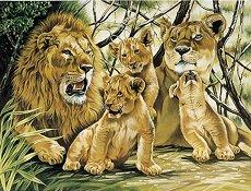 Рисуване по номера - Семейство лъвове - Комплект за картина с размери 30 x 40 cm