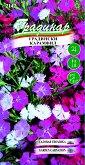 Семена от Карамфил - микс от цветове