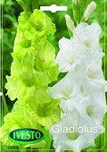 Луковици от Гладиол - зелен и бял