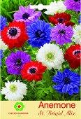 Луковици от Анемоне Brigit Mix - микс от цветове