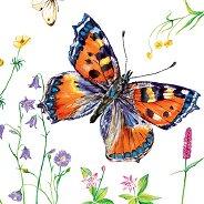 Салфетки за декупаж - Пеперуда - Пакет от 20 броя