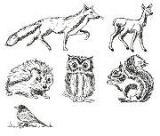 Гумени печати - Горски животни - Комплект от 6 броя и мастило