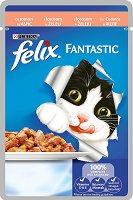 Felix Fantastic with Salmon in Jelly -