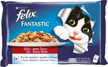 Felix Fantastic with Beef and Chicken in Jelly -