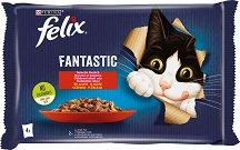 Felix Fantastic with Beef and Chicken in Jelly - Два вида месо в желе за котки в зряла възраст - опаковка от 4 пауча x 100 g -