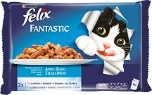 Felix Fantastic with Salmon and Plaice in Jelly -