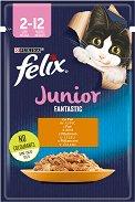 Felix Fantastic Junior with Chicken in Jelly - Пилешко месо в желе за котета на възраст от 1.5 ÷ 12 месеца - пауч 100 g -