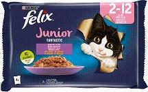 Felix Fantastic Junior with Chicken and Salmon in Jelly - Пилешко месо и сьомга в желе за котета на възраст от 1.5 ÷ 12 месеца - опаковка от 4 пауча x 100 g -