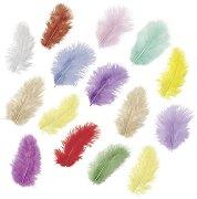 Цветни декоративни пера - Комплект от 15 броя