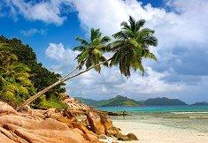 Тайният плаж, Сейшелите - пъзел