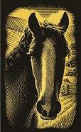 Кон - Скреч картина с размери 11 x 18 cm