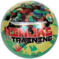 Топка - Костенурките нинджа - топка